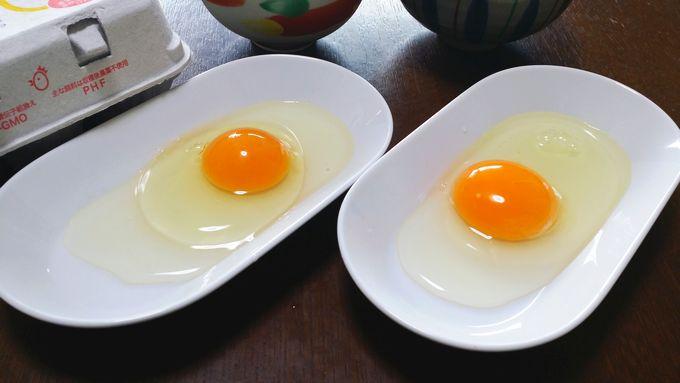 パルシステムの卵の比較