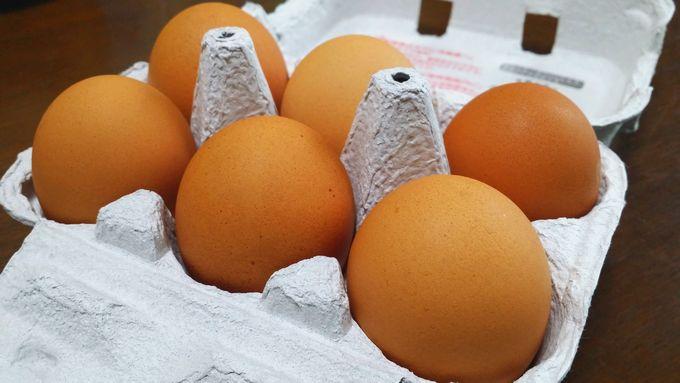 パルシステムの卵