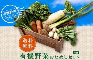 パルシステムのお試しセット 有機野菜