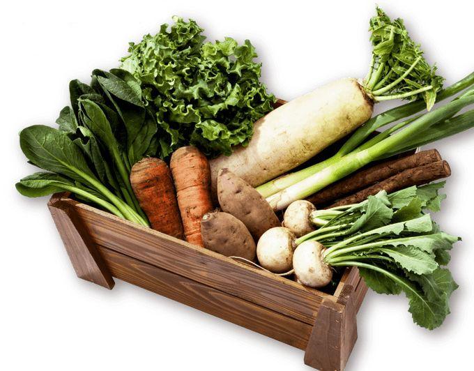 バルシステムの有機野菜