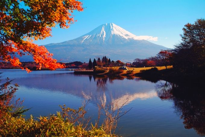 静岡県の食材宅配サービスランキング