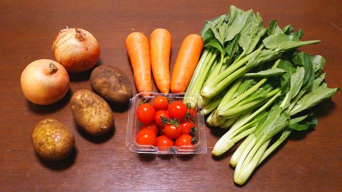 パルシステムのはじめてセット 産直野菜セット
