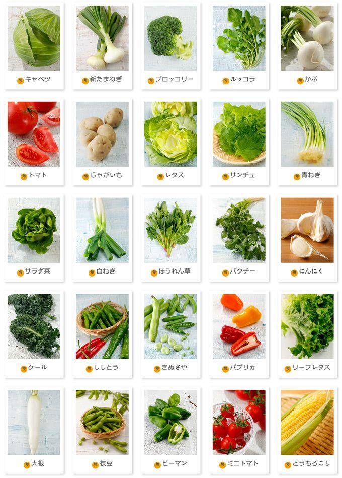 FreshFirst 千葉の野菜・果物