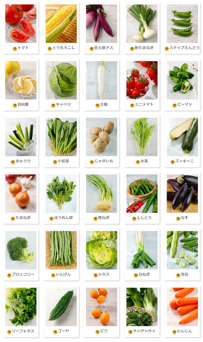 FreshFirst 宮崎の野菜・果物
