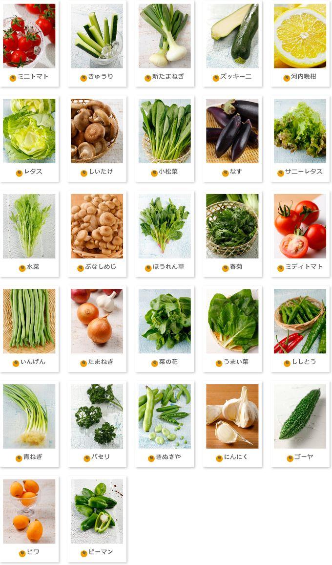 FreshFirst 和歌山の野菜・果物