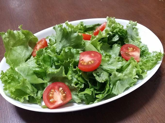 大地を守る会のグリーンリーフとミニトマトで作ったサラダ