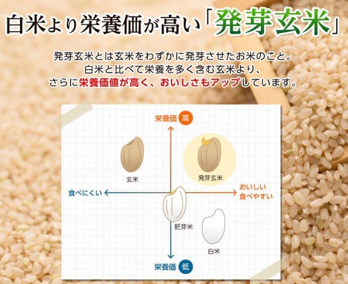 発芽玄米の底力の特徴