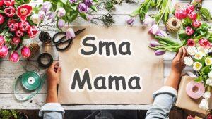 オイシックスの「Sma Mama」キャンペーン