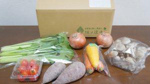坂ノ途中のお試しセットの野菜